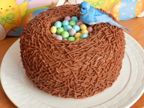http://www.ourhomesweethome.org/wp-content/uploads/2014/03/easter-bird-nest-cake.jpg