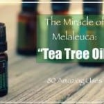 80 Amazing Uses For Tea Tree Oil