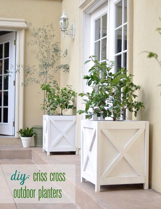 criss-cross-planters