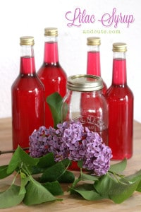 Homemade-Lilac-Syrup