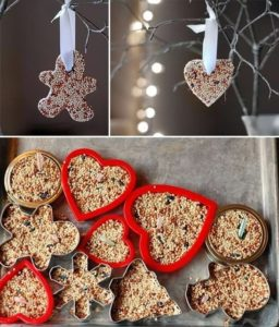 DIY Birdseed ornanments