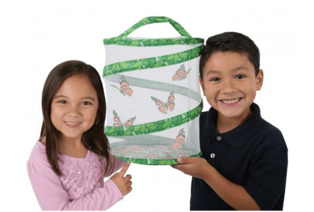 Butterfly Garden Experiment