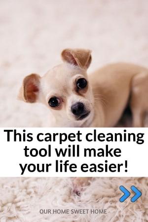 Best Handheld Carpet Cleaner Reviews - carpet