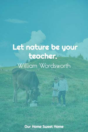 homeschool quote by William Wordsworth